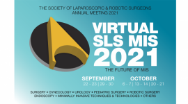 VIRTUAL SLS MIS 2021
